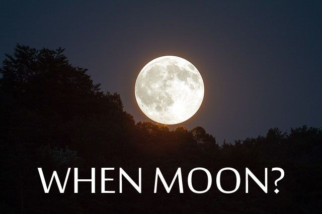 Waarom when moon vragen onzin is volgens crypto experts zoals Gert-Jan.
