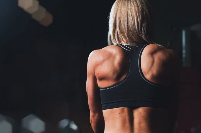 Alles weten over je schouders trainen thuis? Lees dan deze blog!